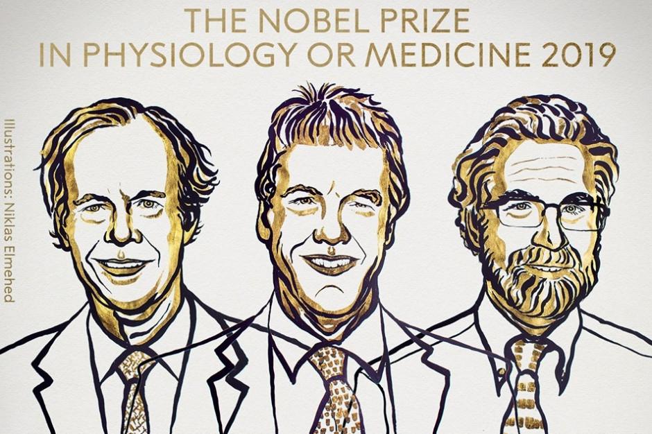 Genetyk dr hab. Wójcicka: badania noblistów dają narzędzia, by opracowywać nowe leki