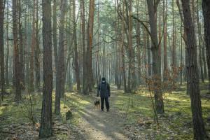 Fizjoterapeuta: spacery bardzo dobrze wpływają na stan ozdrowieńców, którzy przeszli COVID-19