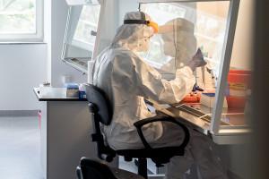 Utrzymuje się spadkowy trend liczby zakażeń SARS-CoV-2