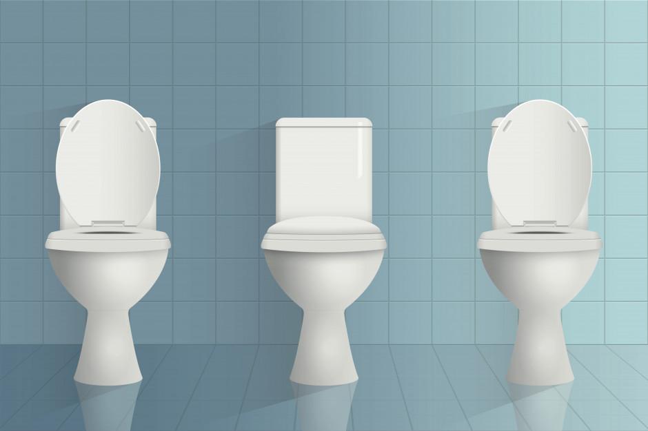 Badacze opracowali inteligentną toaletę służącą do oceny stanu jelit