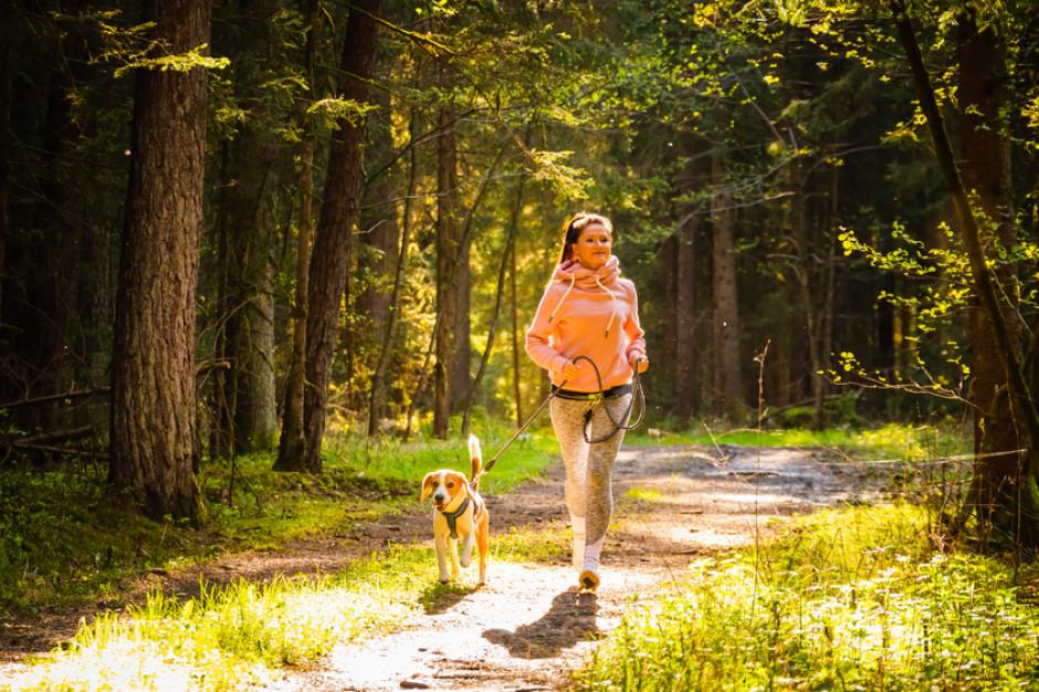 LUX MED posadzi ponad 300 tys. drzew w całej Polsce