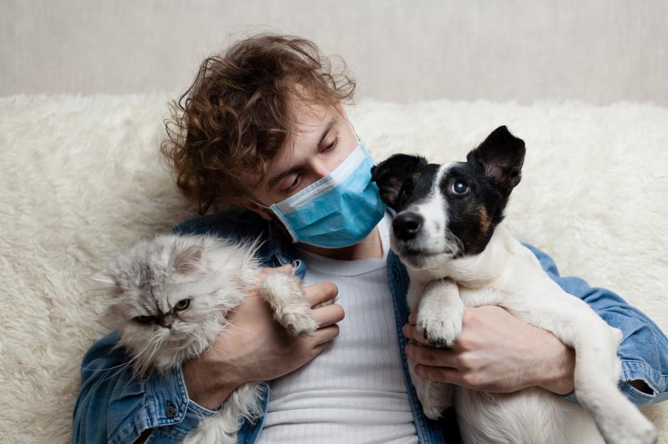 Na COVID-19 można też szczepić psy i koty. Jest rosyjska szczepionka dla zwierząt. To CarniVacCov