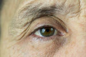 Ludzkie oko jak żaluzja. Naukowcy odkryli ciekawy mechanizm