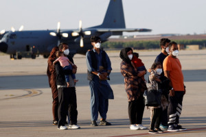Afgańskie dzieci w Polsce zatruły się grzybami. Poszukiwany dawca wątroby