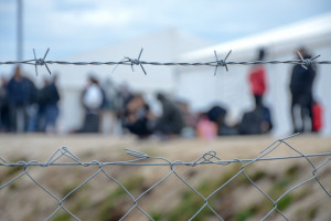 Mazowieckie. Czterech kolejnych afgańskich uchodźców zatruło się grzybami