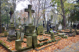 Ekspert: należy zamknąć cmentarze na Wszystkich Świętych dla niezaszczepionych