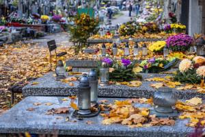 Cmentarze na 1 listopada. Minister zdrowia apeluje na Wszystkich Świętych